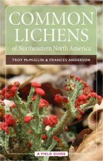 Common Lichens of Northeastern North America