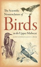 The Scientific Nomenclature of Birds in the Upper Midwest