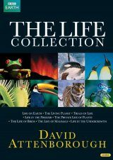 Attenborough: The Life Collection (Region 2 & 4)
