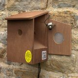 Wired Camera Bird Box