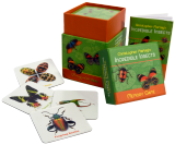 Insects Memory Game