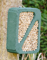 WoodStone Insect Block