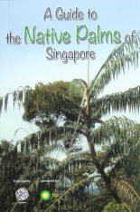 A Guide to the Native Palms of Singapore