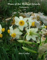 Flora of the Maltese Islands, Volume 4