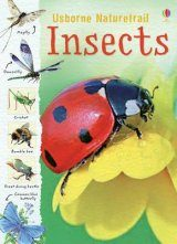 Insects & Other Creepy-Crawlies