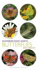 Bloomsbury Pocket Guide to Butterflies