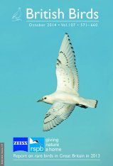 British Birds Report on Rare Birds in Great Britain in 2013