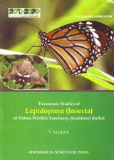 Taxonomic Studies of Lepidoptera (Insecta) of Dalma Wildlife Sanctuary, Jharkhand (India)