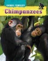 Animal Families: Chimpanzees