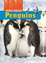 Animal Families: Penguins