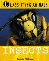 Classifying Animals: Insects