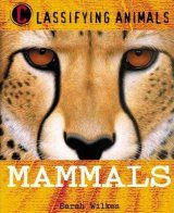 Classifying Animals: Mammals