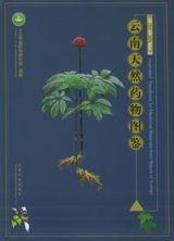 Illustrated Handbook for Medicinal Materials From Nature in Yunnan, Volume 2 [Chinese]