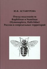 Pchely Podsemeistv Rophitinae i Nomiinae (Hymenoptera, Halictidae) Rossii i Sopredel'nykh Territorii [Bees of the Subfamilies Rophitinae and Nomiinae (Hymenoptera, Halictidae) of Russia and Adjacent Territories]