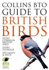 Collins BTO Guide to British Birds