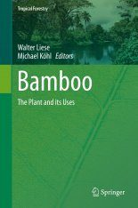 Bamboo: The Plant and its Uses