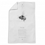 Buff-tailed Bumblebee Tea Towel