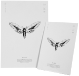Privet Hawk Moth Print A3