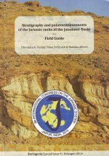 Stratigraphy and Palaeoenvironments of the Jurassic Rocks of the Jaisalmer Basin
