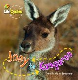 Joey to Kangeroo