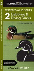 Cornell Lab of Ornithology Waterfowl ID: #2 Dabbling Ducks & Diving Ducks