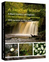 A Swirl of Water: The Natural history of a Woodland Stream (Region 2)