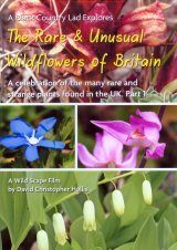 Rare & Unusual British Wildflowers, Part 1 (Region 2)