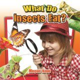 What Do Insects Eat?