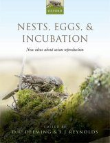 Nests, Eggs, & Incubation