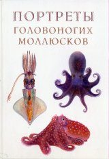 Atlas of Lifetime Coloring of the Cephalopods (Portraits of Cephalopods) [Russian]