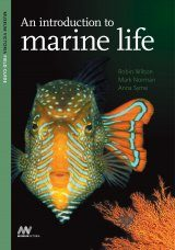 An Introduction to Marine Life