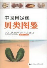 Collection of Mussels with Byssus in China [Chinese]