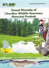 Faunal Diversity of Churdhar Wildlife Sanctuary Himachal Pradesh