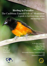 Birding in Paradise – The Caribbean Emerald Isle of Montserrat