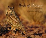 Birds of Morocco