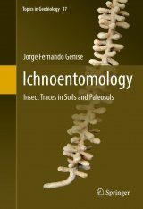 Ichnoentomology: Insect Traces in Soils and Paleosols
