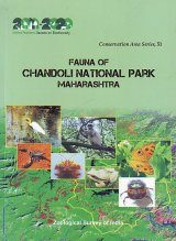 Fauna of Chandoli National Park Maharashtra