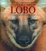 Stories of a Golden Wolf / Histórias de um Lobo