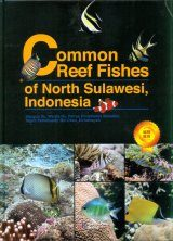 Common Reef Fishes of North Sulawesi, Indonesia