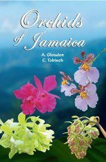 Orchids of Jamaica