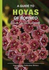 A Guide to Hoyas of Borneo