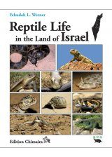 Reptile Life in the Land of Israel