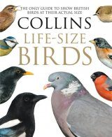 Collins Life-Size Birds