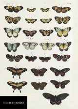 Natural History Museum Butterflies Notebook