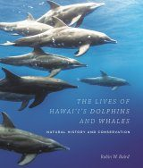 The Lives of Hawai'i's Dolphins and Whales