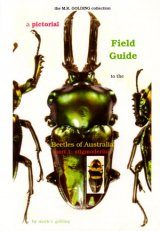A Pictorial Field Guide to the Beetles of Australia: Part 1, Stigmoderini