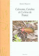 Calosoma, Carabus et Cychrus de France [Calosoma, Carabus and Cychrus of France]