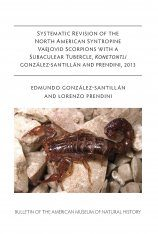 Systematic Revision of the North American Syntropine Vaejovid Scorpions with a Subaculear Tubercle, Konetontli González-Santillán and Prendini, 2013