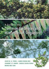 A Guide to the Common Epiphytes and Mistletoes of Singapore