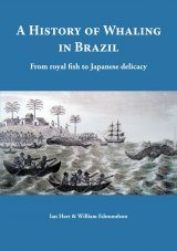 A History of Whaling in Brazil